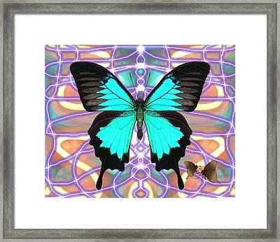 Butterfly Patterns 20 Framed Print
