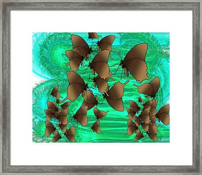 Butterfly Patterns 3 Framed Print