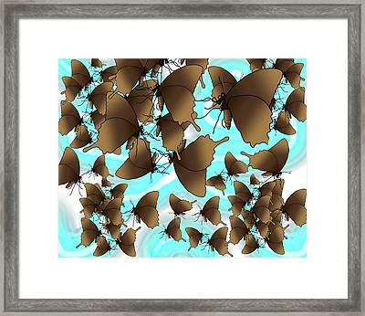 Butterfly Patterns 6 Framed Print