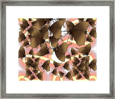 Butterfly Patterns 8 Framed Print
