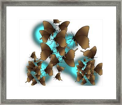 Butterfly Patterns 9 Framed Print