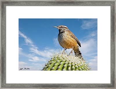 Cactus Wren On A Saguaro Cactus Framed Print