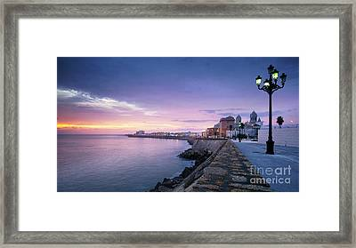 Framed Print featuring the photograph Cadiz Skyline And Cathedral by Pablo Avanzini