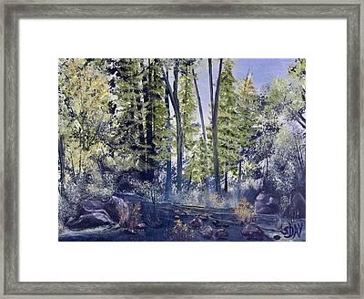 Camp Trail Framed Print