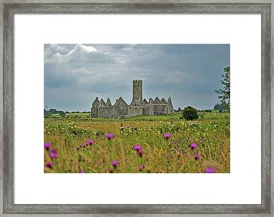 Framed Print featuring the photograph Castle In The Wildflowers by Mark Duehmig