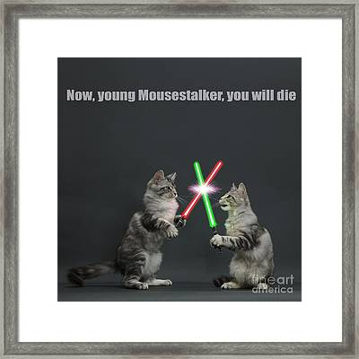 Framed Print featuring the photograph Cat Wars by Warren Photographic
