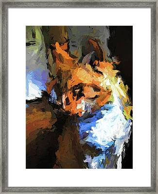 Cat With The Turned Head Framed Print