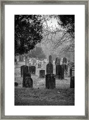 Framed Print featuring the photograph Cemetery In The Pines Bw by Kristia Adams