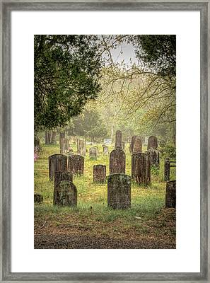 Framed Print featuring the photograph Cemetery In The Pines by Kristia Adams