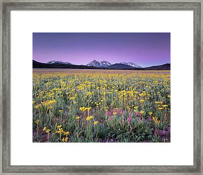 Central Idaho Color Framed Print by Leland D Howard