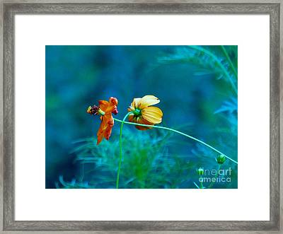 Framed Print featuring the photograph Chance Meeting by Rosanne Licciardi