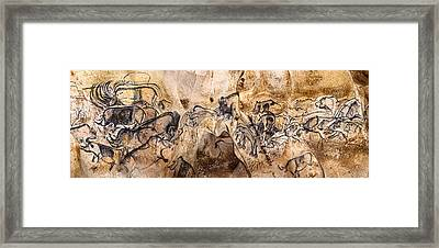 Chauvet Lions And Rhinos Framed Print