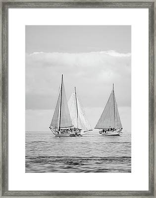 Framed Print featuring the photograph Chesapeake Bay Skipjacks by Mark Duehmig