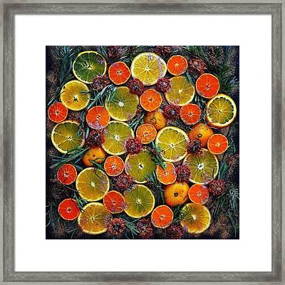 Citrus Time Framed Print