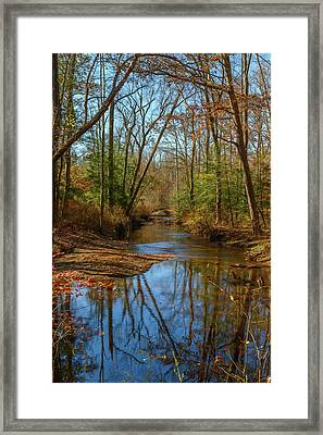 Framed Print featuring the photograph Clear Path by Cindy Lark Hartman