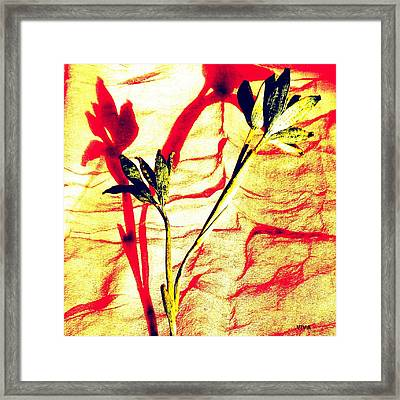 Clementine Sprig Contemporary Framed Print
