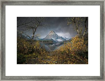 Framed Print featuring the photograph Clinging On / Late Fall / Two Medicine Lake, Glacier National Park  by Nicholas Parker