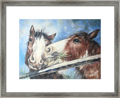Clydesdale Pair Framed Print