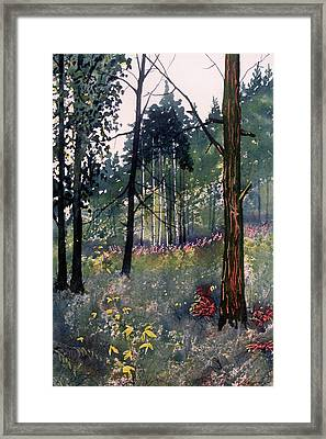 Codbeck Forest Framed Print