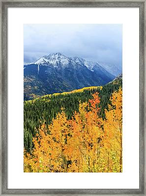 Colorado Aspens And Mountains 4 Framed Print