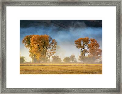 Colorado Autumn Fog Framed Print
