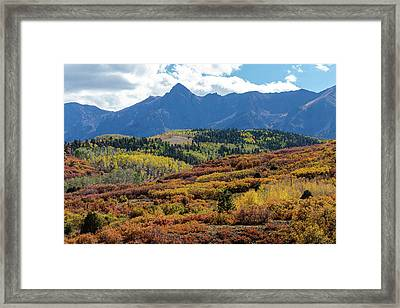 Framed Print featuring the photograph Colorado Color Bonanza by James BO Insogna
