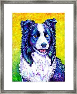 Colorful Border Collie Dog Framed Print