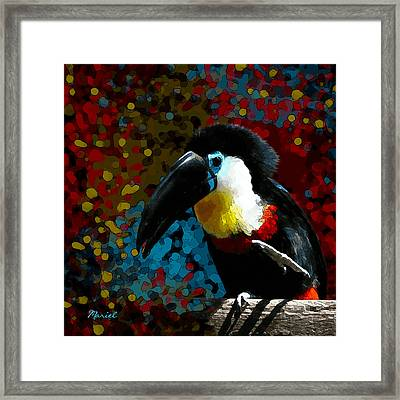 Colorful Toucan Framed Print