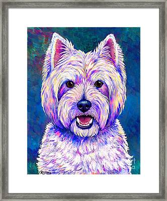 Colorful West Highland White Terrier Blue Background Framed Print