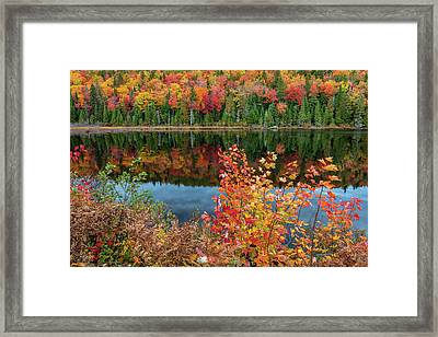 Framed Print featuring the photograph Colors Of Aurtumn by Pierre Leclerc Photography