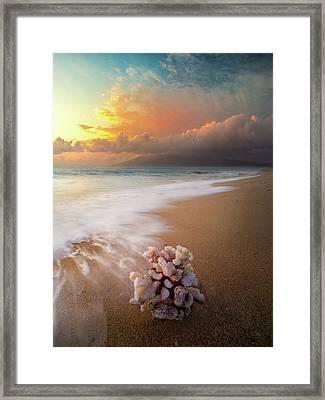Come Back To The Sea / Maui, Hawaii  Framed Print