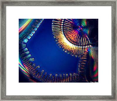 Complicated Joy Framed Print