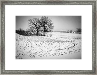Framed Print featuring the photograph Corn Snow by Kendall McKernon