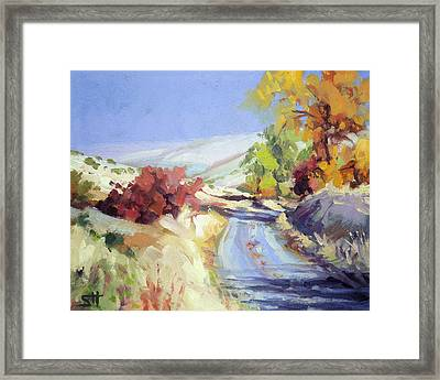 Country Blue Sky Framed Print