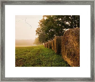Country Morning Mist Framed Print