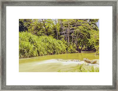 Country River In Trelawny Jamaica Framed Print