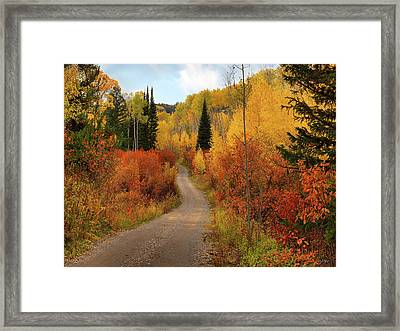 Country Road In Autumn Framed Print by Leland D Howard