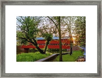 Covered Through Tree Framed Print