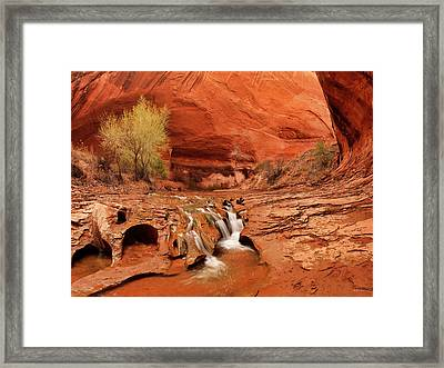 Coyote Gulch Texture Framed Print by Leland D Howard