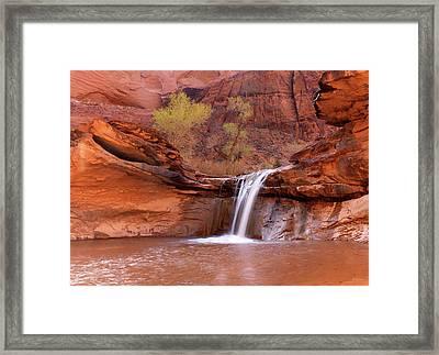 Coyote Gulch Waterfall Framed Print by Leland D Howard
