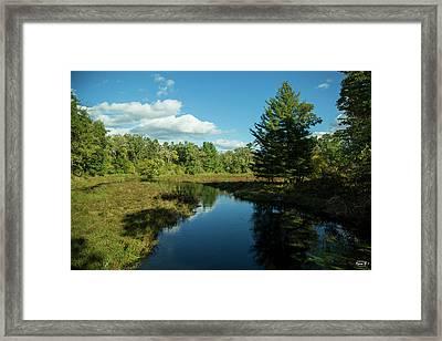 Creek Framed Print