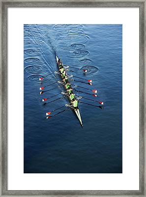 Crew Team Rowing Framed Print by Fuse