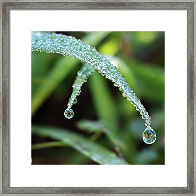 Framed Print featuring the photograph Crossing Over by Michelle Wermuth
