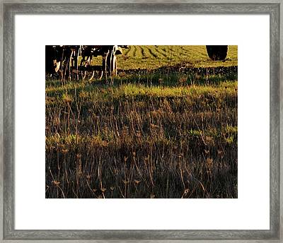 Framed Print featuring the photograph Cultivator Winter Rest by Jerry Sodorff