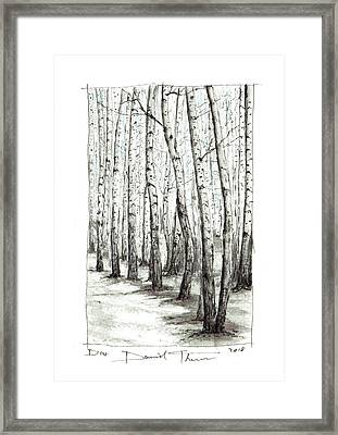 D104 Framed Print