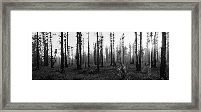 D1098 - Tulbagh Landscape Framed Print