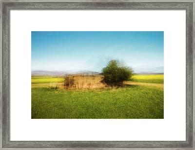 D1992p Framed Print