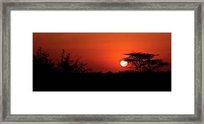 D8590 Framed Print