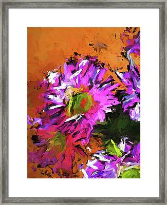 Daisy Rhapsody In Lavender And Pink Framed Print