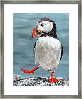 Dancing Puffin Framed Print